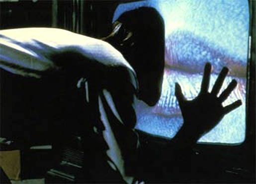 David Cronenberg's novel Consumed, reviewed.