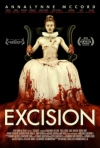 excision-poster
