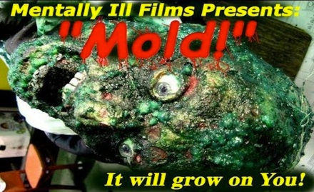 Mold banner1