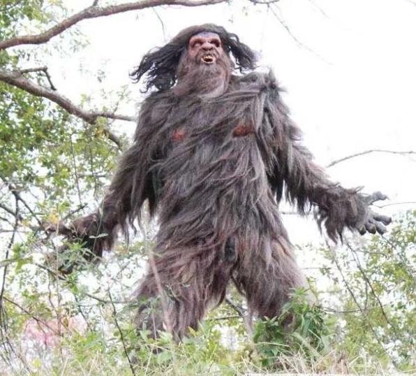 Iu0027ve seen better Bigfoot costumes at Spirit Halloween stores! & Bigfoot Wars (2014) | Horror Movies Horror News Horror Reviews ...
