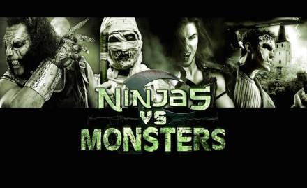 Ninjas vs Monsters banner