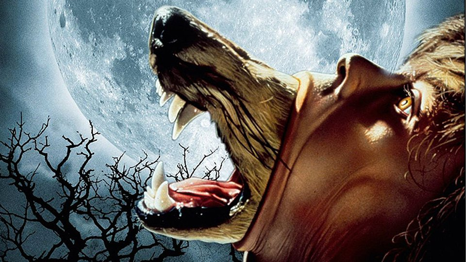 most horror hollywood movies 2015