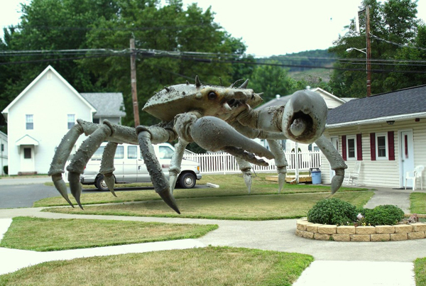 Queen Crab1