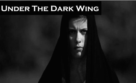 under-the-dark-wing-banner