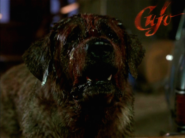 animals cujo