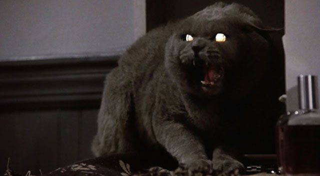 animals pet sematary
