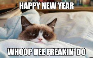the_grumpy_cat__happy_new_year_____d_by_cartoonrockfan93-d709aa5